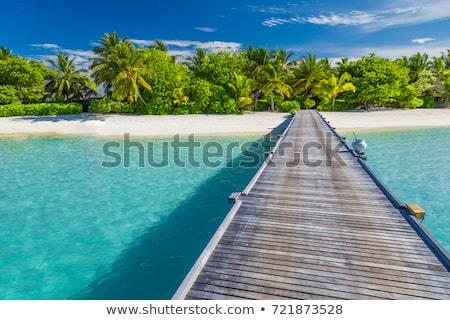 Maldív-szigetek · fából · készült · gyönyörű · tengerpart · kék · ég · felhők - stock fotó © zhekos