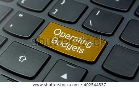 White Keyboard with Budget Button. Stock photo © tashatuvango