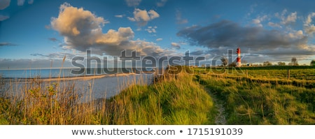 landscape baltic sea dunes lighthouse in red and white  Stock photo © juniart