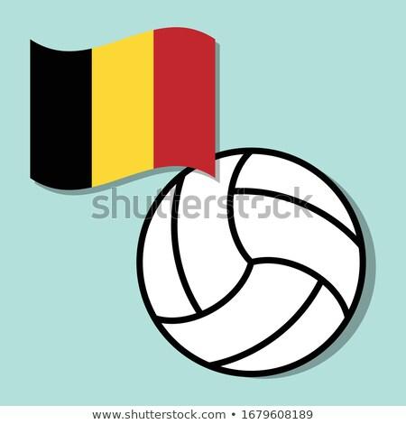 volleybal · team · geïsoleerd · achtergrond · Blauw - stockfoto © bosphorus