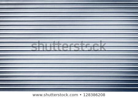Corrugated Zinc Sheet wall and door Stock photo © smuay