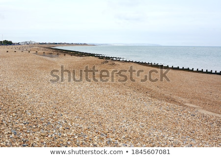 shingle beach Stock photo © nito