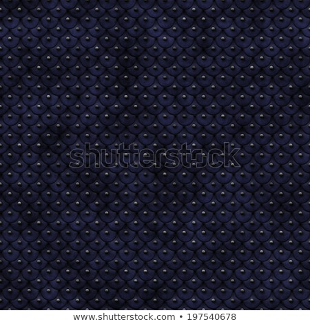 Stock photo: Chain Armour Background
