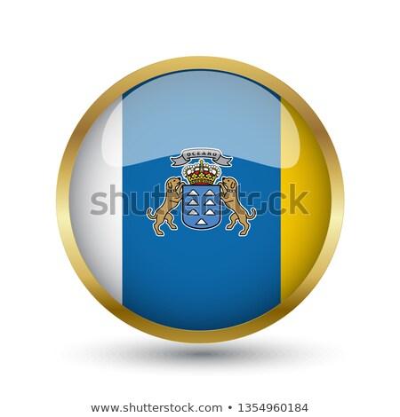 Metal ícone canárias praça bandeira cores Foto stock © dvarg