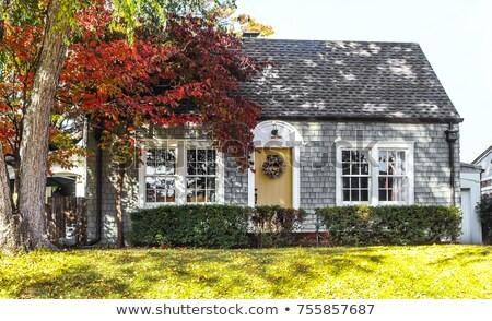 bois · mur · fenêtres · deux · fond · fenêtre - photo stock © hofmeester