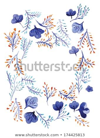 ぬれた オレンジ 青い花 孤立した 咲く 花 ストックフォト © stocker