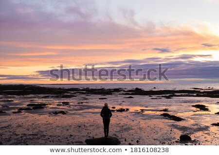 Woman standing on the coast, Quebec, Canada Stock photo © bmonteny