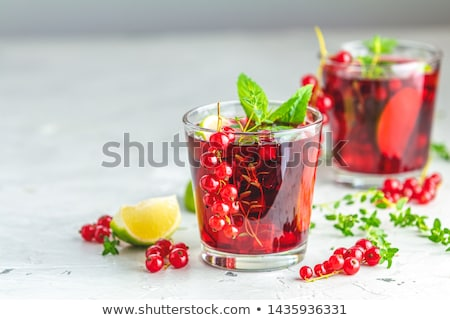 Roter Cocktail mit Johannisbeeren stock photo © BarbaraNeveu