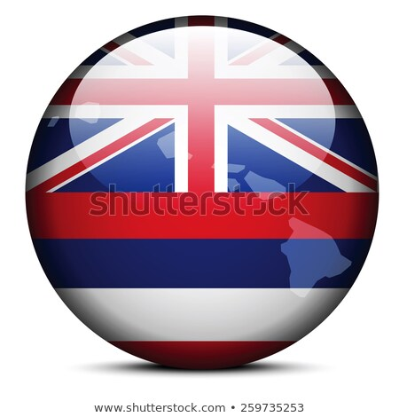 Map on flag button of USA Hawaii State Stock photo © Istanbul2009