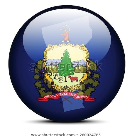 Mapa bandeira botão EUA Vermont vetor Foto stock © Istanbul2009