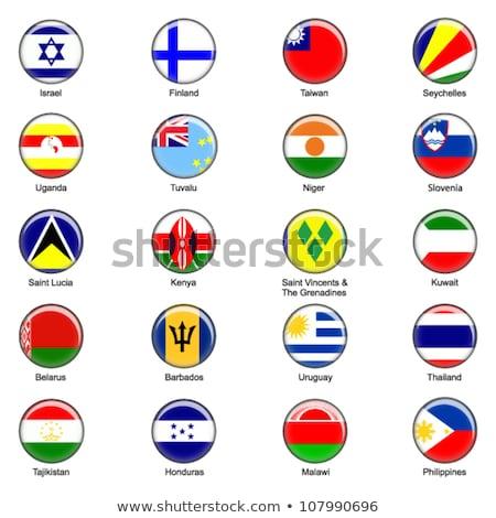 Mapa bandeira botão Tuvalu vetor imagem Foto stock © Istanbul2009