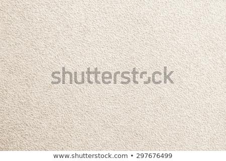 Beige Carpet Background stock photo © njnightsky
