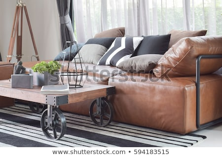 Moderno couro sofá isolado branco casa Foto stock © kokimk
