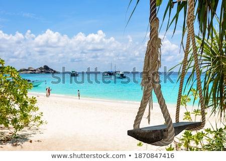 cadeira · parque · beira-mar · árvore · onda · ver - foto stock © yongkiet