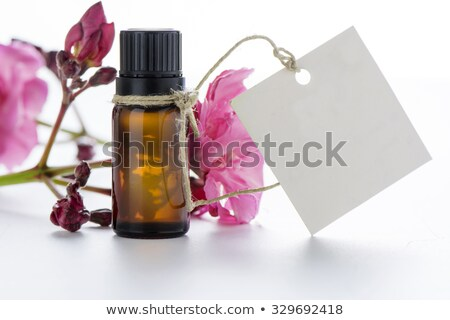 bottle with essence oil and pink flowers isolated on white Stock photo © tetkoren