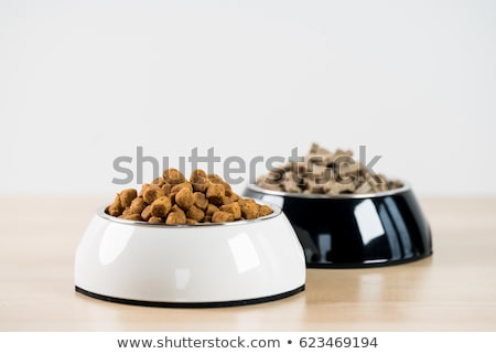 Tigela animal de estimação comida piso fundo carne Foto stock © deyangeorgiev