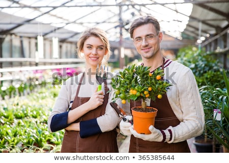 Happy attractive woman and man gardeners holding small mandarine tree  Stock photo © deandrobot