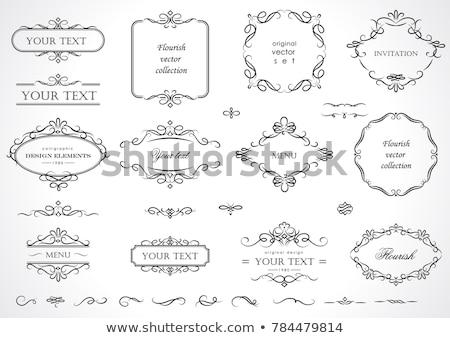 Elegante monograma modelo de design conjunto luxo Foto stock © sdmix