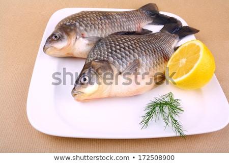 Two fresh carp stock photo © alrisha