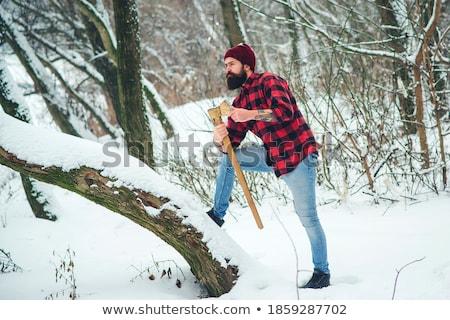 ハンサム · あごひげを生やした · 若い男 · 斧 · 冬 · 森林 - ストックフォト © deandrobot