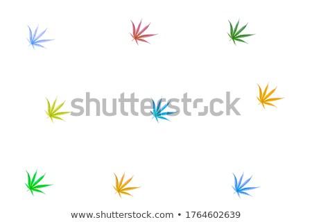cannabis colored leaf design decorative floral stamps Stock photo © Zuzuan