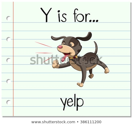 Flashcard letter Y is for yelp Stock photo © bluering