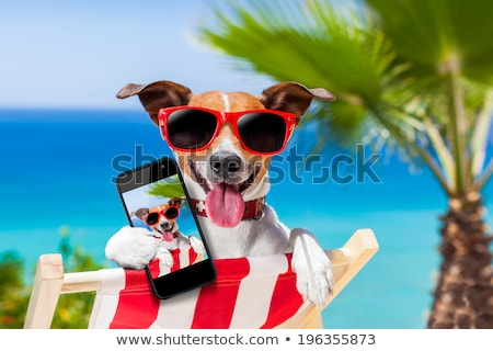 Lata smartphone shot plaży morza Zdjęcia stock © nito