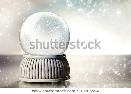 Stock foto: Silber · Schnee · Welt · rustikal · Bild · Kiefer