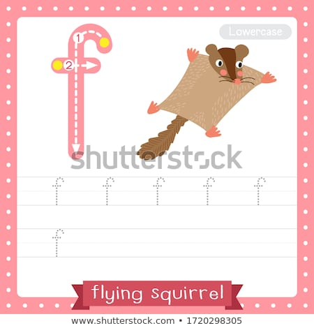 Flashcard letter F is for flying Stock photo © bluering