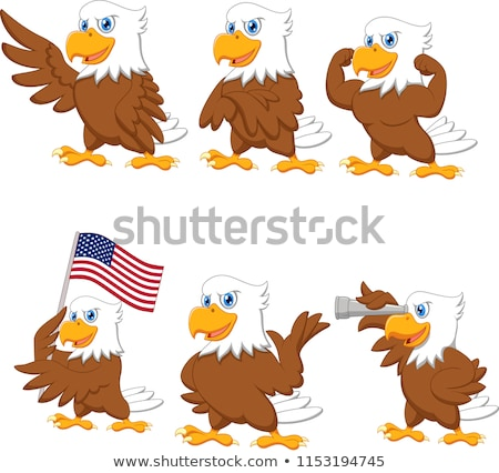 Eagle cartoon stock photo © sifis