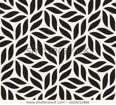 ベクトル シームレス 黒白 六角形 グリッド 幾何学模様 ストックフォト © CreatorsClub