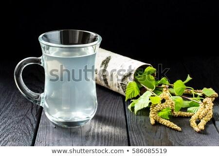 Nyírfa tavasz üveg ital növény dzsúz Stock fotó © yelenayemchuk