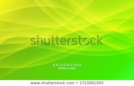 Green waveform Stock photo © SwillSkill