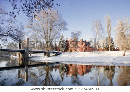 руин · зима · древних · замок · деревне · здании - Сток-фото © avq