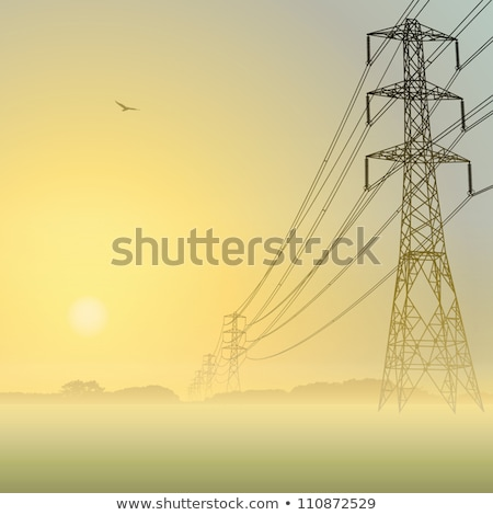 Electric power lines in the fog. Morning dawn. Stock photo © IMaster