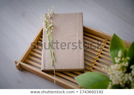 Friss ötletek üzlet könyv cím gerincoszlop Stock fotó © tashatuvango