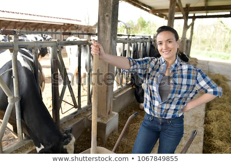 Man and woman standing in cattle shed Stock photo © IS2