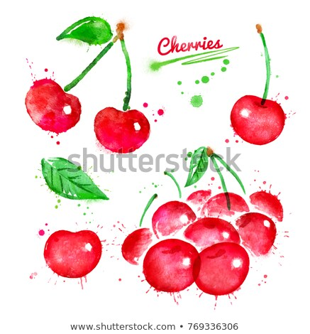 Watercolor illustrations set of cherries Stock photo © Sonya_illustrations
