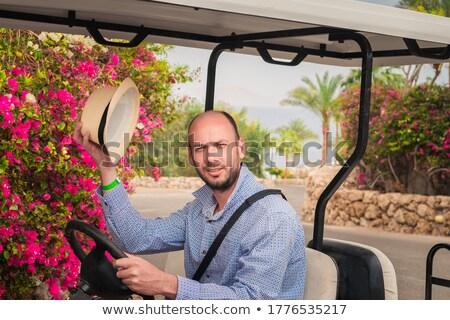 Férfi ül elektromos sportautó autó ajtó Stock fotó © IS2