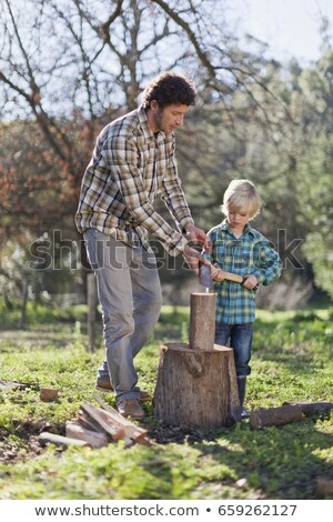 Father teaching son to chop wood Stock photo © IS2