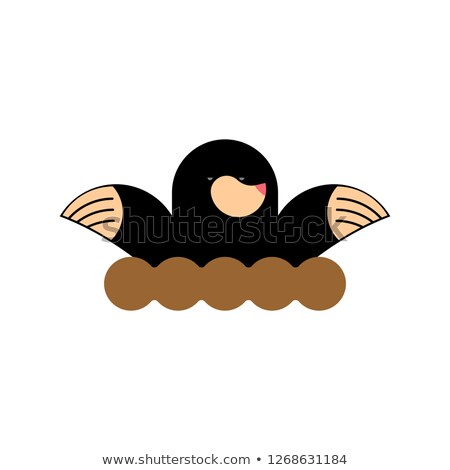 Mole isolated. shrew on white background. Pest Farm Stock photo © popaukropa