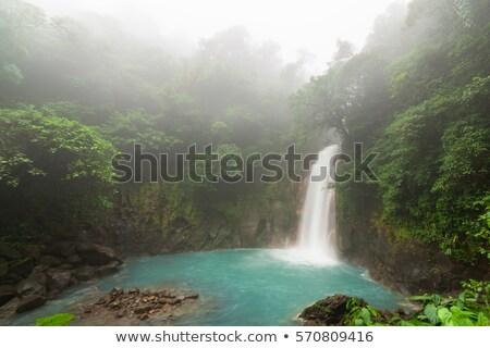 Rio rivier mistig dag park Costa Rica Stockfoto © Juhku