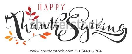 Boldog hálaadás díszes kéz írott kalligráfia Stock fotó © orensila