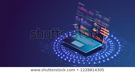 İş analizi çevrimiçi istatistik afişler çalışmak Stok fotoğraf © robuart