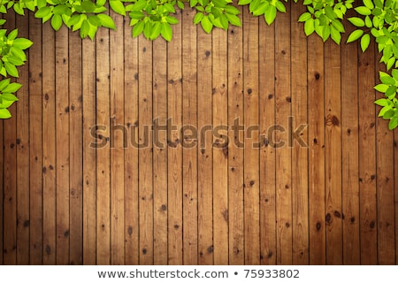 Old Grung Wood Texture With Leaves Use For Background Stok fotoğraf © SuriyaPhoto