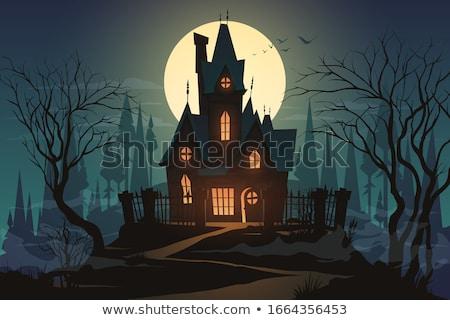 Halloween strony księżyc witch nawiedzony domu Zdjęcia stock © WaD