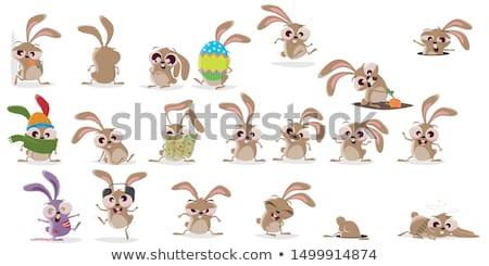 Brutto coniglio piedi cartoon illustrazione coniglio Foto d'archivio © cthoman