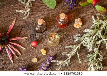 bottles of essential oil with frankincense wintergreen lavender and other herbs stock photo © madeleine_steinbach