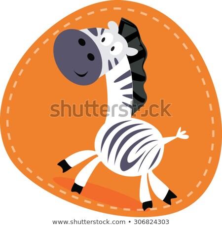 Karikatür zebra öfkeli örnek bakıyor Stok fotoğraf © cthoman