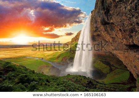Cachoeira Islândia verão paisagem verde Foto stock © Kotenko